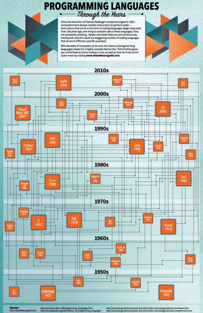 Questa immagine ha l'attributo alt vuoto; il nome del file è Programming-Languages-Infographic-699x1080.jpg