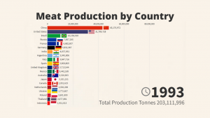 Meat Production by Country